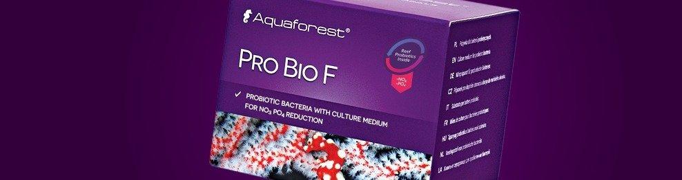 Reef probiotics and nitrification